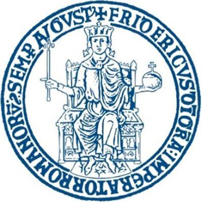 Logo della Università degli Studi di Napoli Federico II